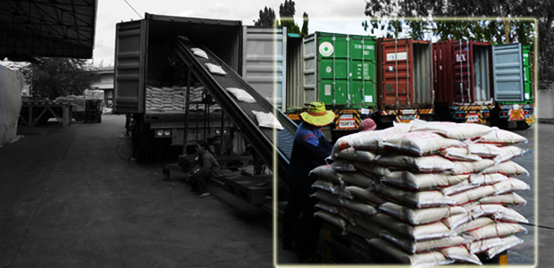 Rice, Loading, Container